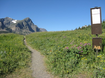 Triple Divide Pass Trailhead from Cut Bank Glacier National Park