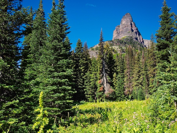 Pumpelly Pillar, Two Medicine, Glacier National Park