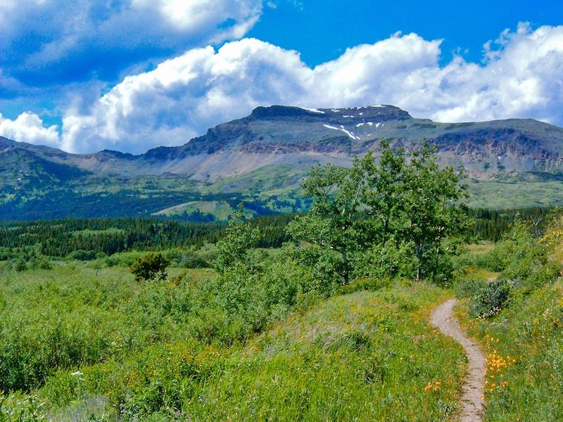 Calf Robe Mountain, Glacier National Park