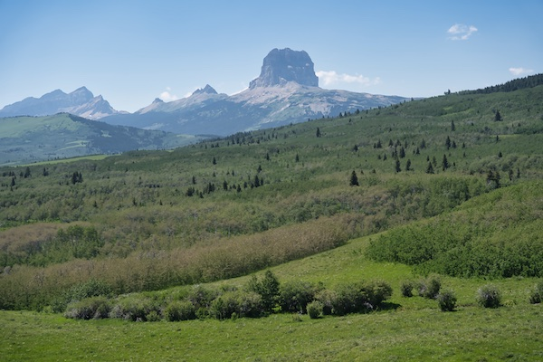 Chief Mountain, Ninaki Peak, and Papoose